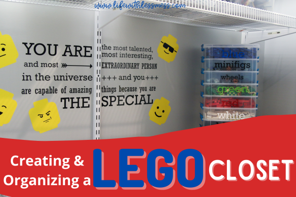 LEGO closets are a great solution for letting little minds create and letting parents not see the mess.