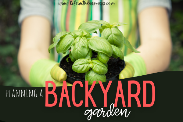 A beginner's guide to planning a backyard garden.
