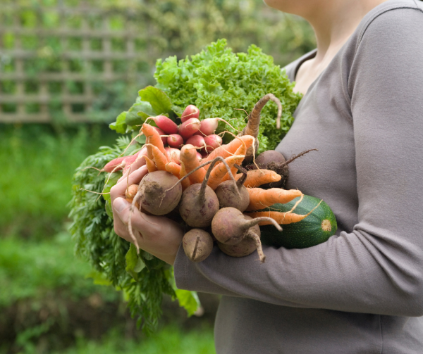 When planning a backyard garden, plant foods your family will eat.